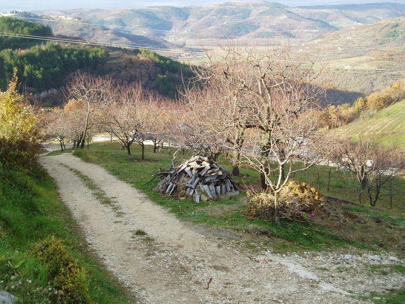 Istria 022