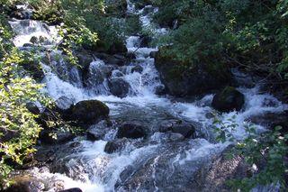 Alaska Rapids