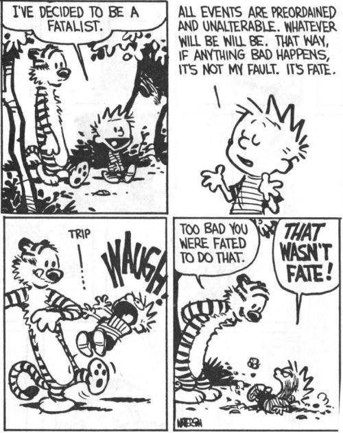 Fate-tiger